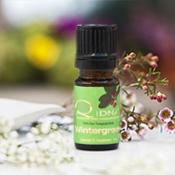 QDNA® Cypress Essential Oil